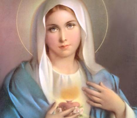 immaculata-2b-467x6005B15D.jpg